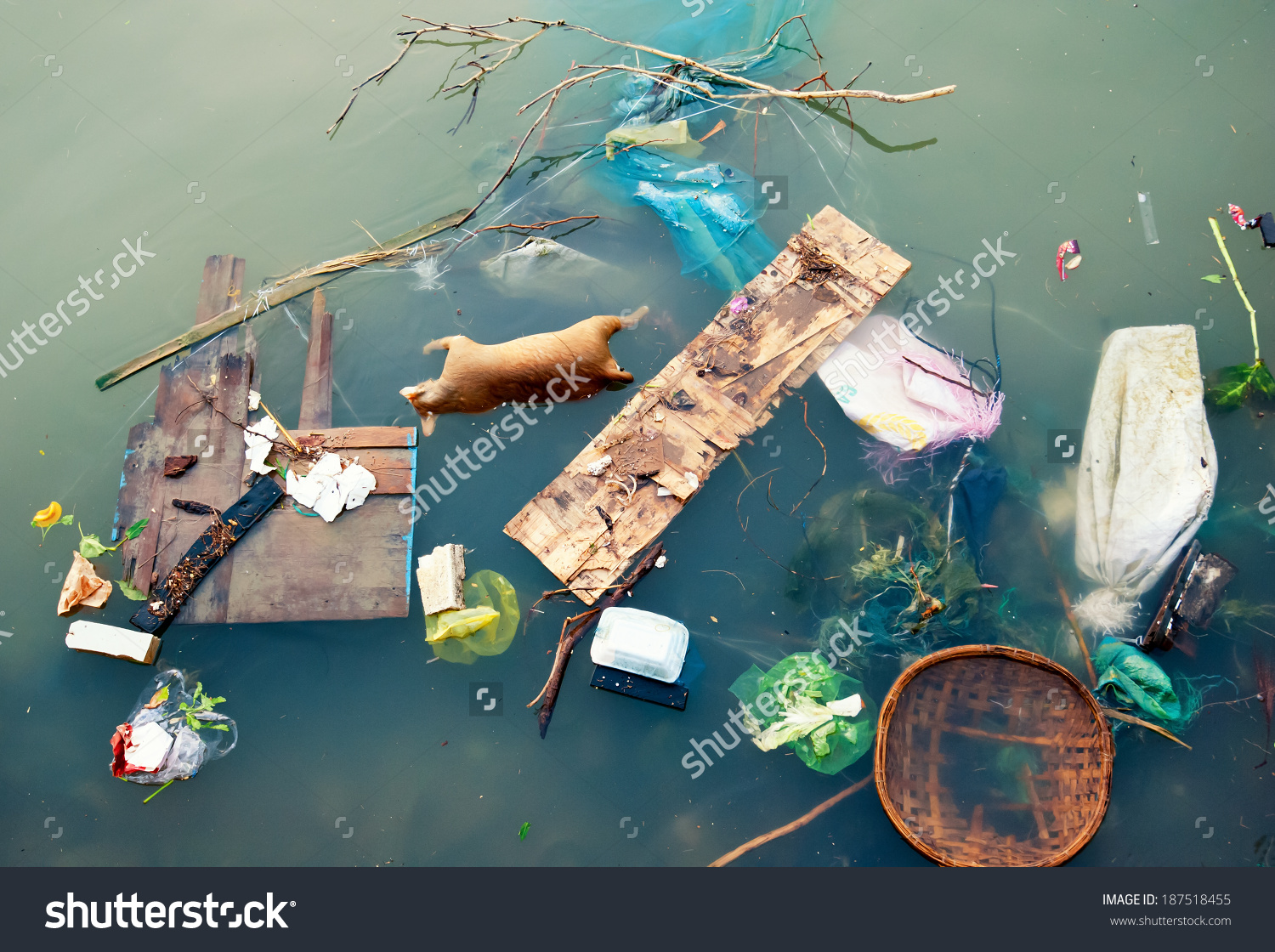 Water Pollution Plastic Garbage Dirty Trash Stock Photo 187518455.
