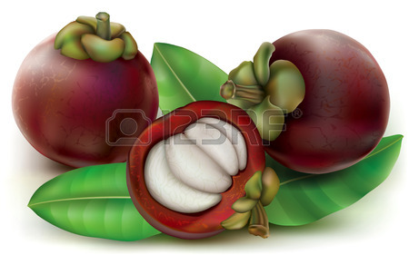 Mangosteen Fruits With Fruit Cut Open. Garcinia Mangostana.