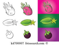 Garcinia mangostana Clip Art EPS Images. 8 garcinia mangostana.
