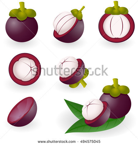 Garcinia Mangostana Stock Photos, Royalty.