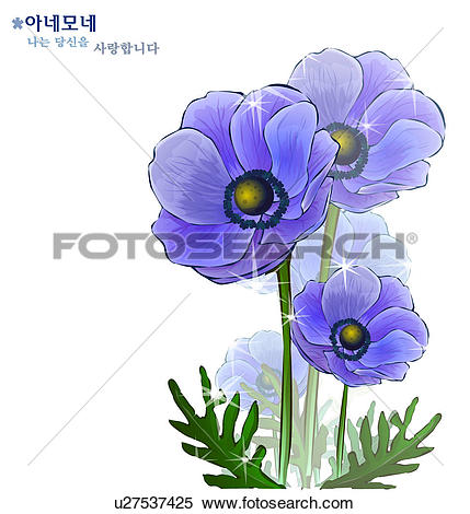 Stock Illustration of flowers, nature, plants, anemone, plant.
