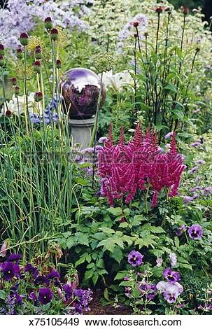 Stock Photograph of Flower garden with Astilbe flowers and silver.