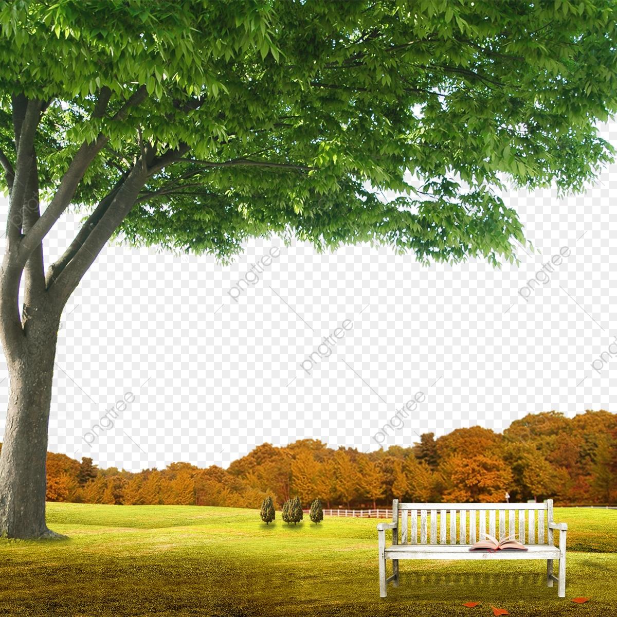Garden Background Scene With Natural Background, Garden, Vacation.