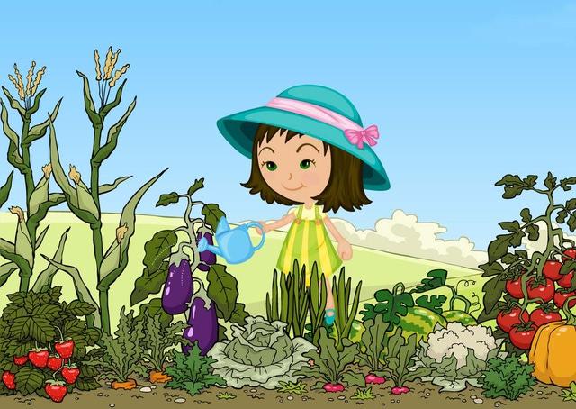 Garden Clipart.