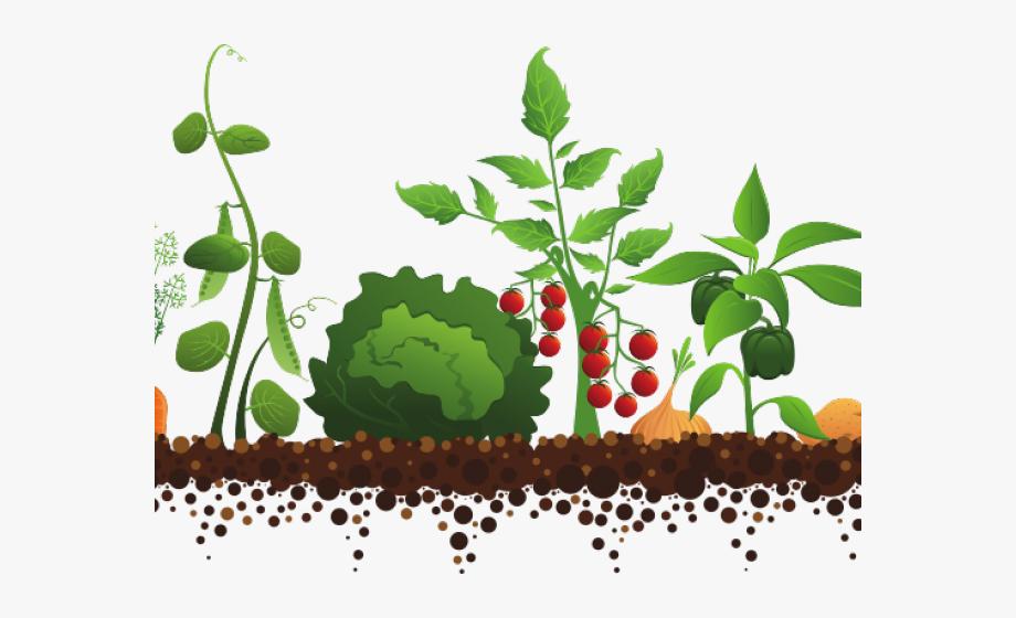 Garden Cliparts Free Download Clip Art Carwad.