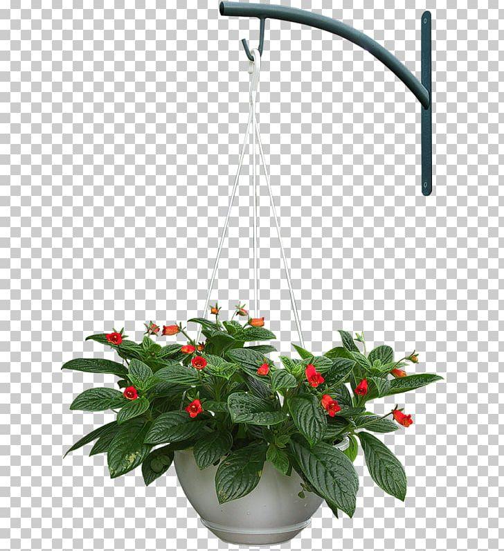 Adobe Photoshop Design Portable Network Graphics.