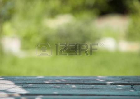 3,824 Empty Garden Stock Vector Illustration And Royalty Free.