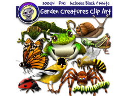 Garden Creatures Food Web / Ecosystem Clip Art by Catcarolines.