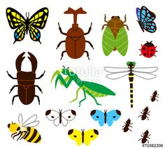 garden cliparts with insects.