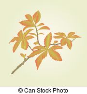 Vector Clip Art of Twig garden currant bushes with red berries.