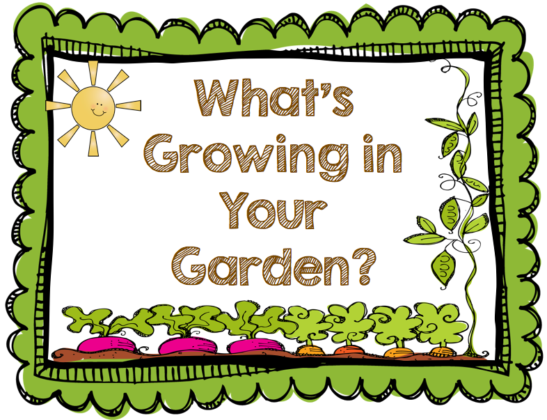 My view in the garden clipart - Clipground