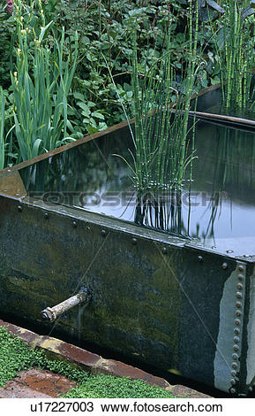 Stock Photo of Small water feature in old tank in country garden.