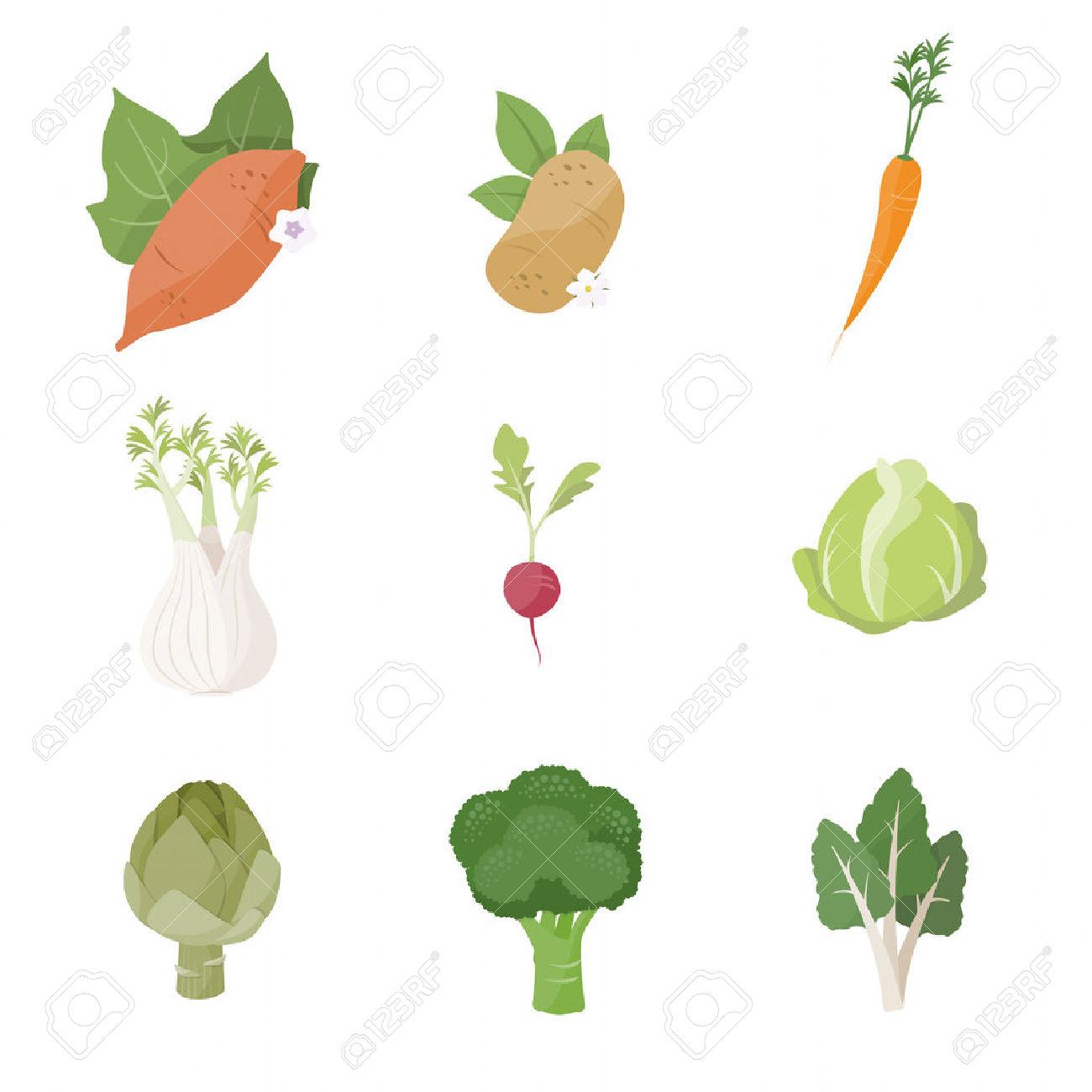 Garden Fresh Vegetables Set On White Background, Including Sweet.