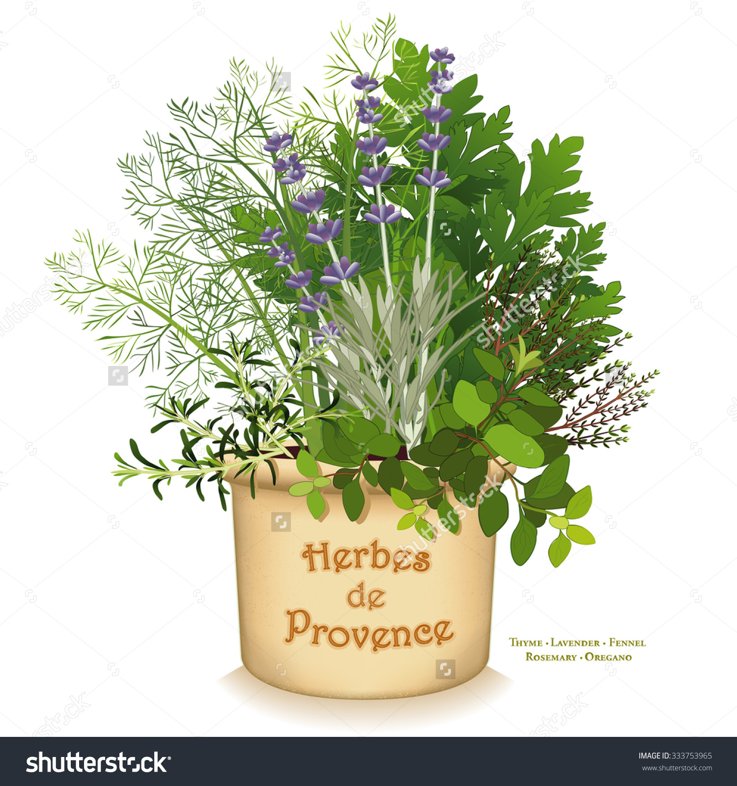 Herbes De Provence Garden Planter, Aromatic Cooking Herbs Of Sw.
