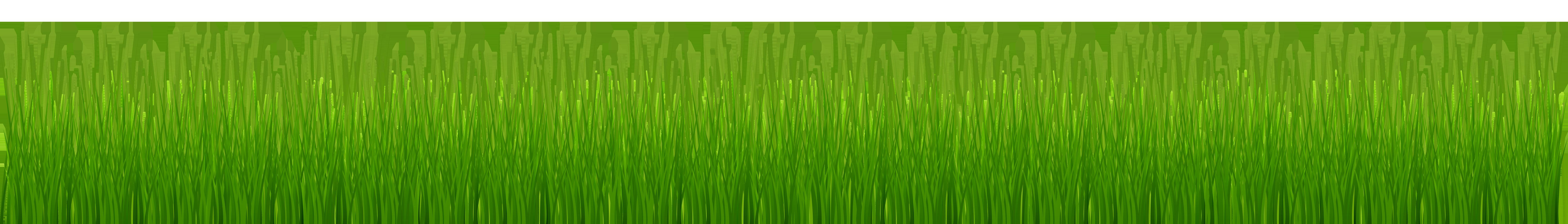 Garden Grass PNG Clip Art.