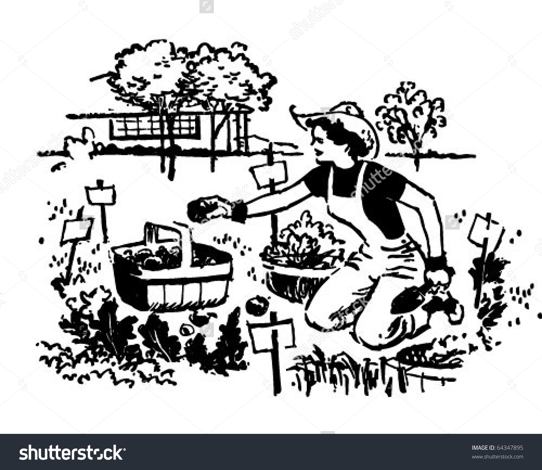Woman Gardening Retro Clipart Illustration Stock Vector 64347895.