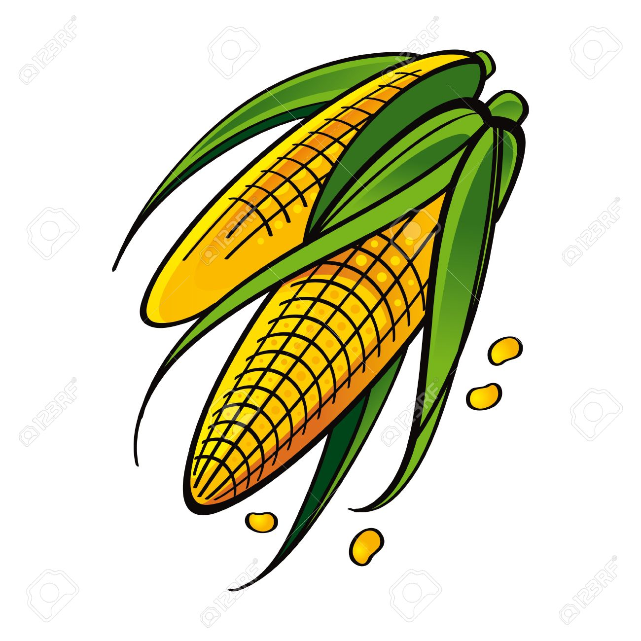 Yellow Corn With Leaves Seed Vegetable Food Market Garden Harvest.