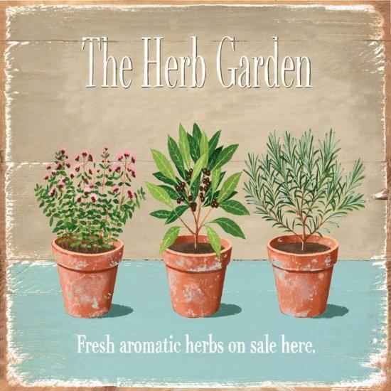 Herb garden clipart.