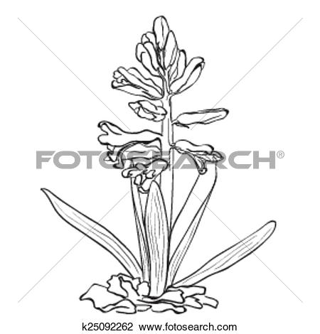 Clipart of Hand drawn flowers.