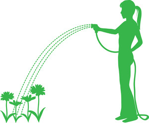 Watering Clipart.