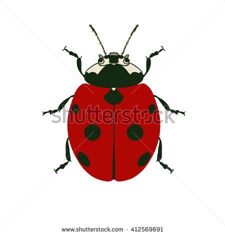 Hexapod Insects Stock Photos, Royalty.