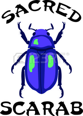 272 Coleoptera Stock Illustrations, Cliparts And Royalty Free.