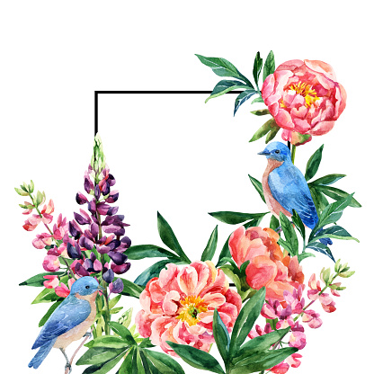 Lupine Flower Pictures Clip Art, Vector Images & Illustrations.