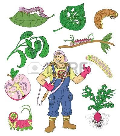 Garden Pest Control Stock Photos Images, Royalty Free Garden Pest.
