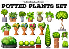 Potted Plant Clipart Stock Photos, Images, & Pictures.