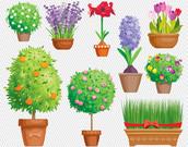 Items similar to Flower Clipart. Flower Garden Illustration.