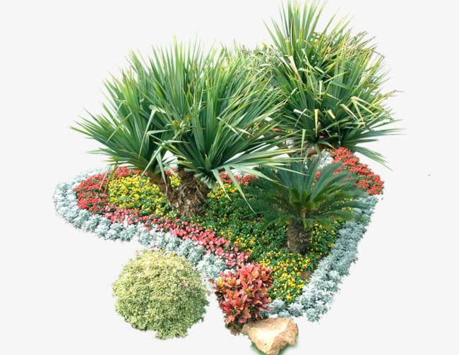 Garden Nursery Plants PNG, Clipart, Decoration, Garden, Garden.