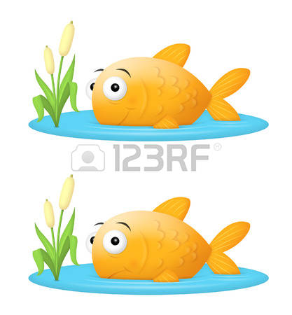 10,422 Pond Water Stock Vector Illustration And Royalty Free Pond.