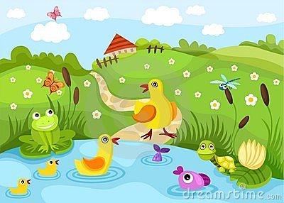 Pond Stock Illustrations.