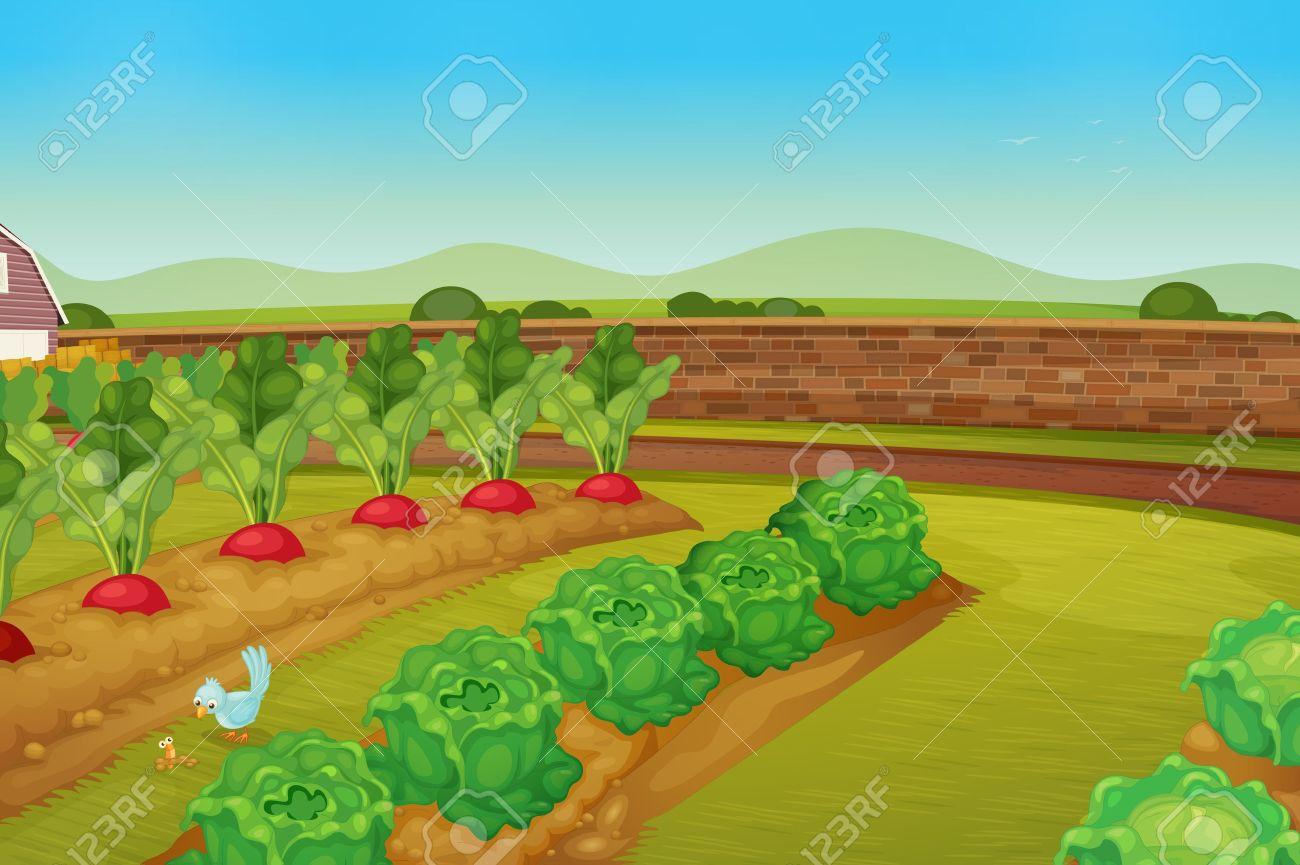 Garden row clipart vegetable.