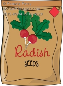 Clip Art Illustration of a Packet of Radish Seeds.