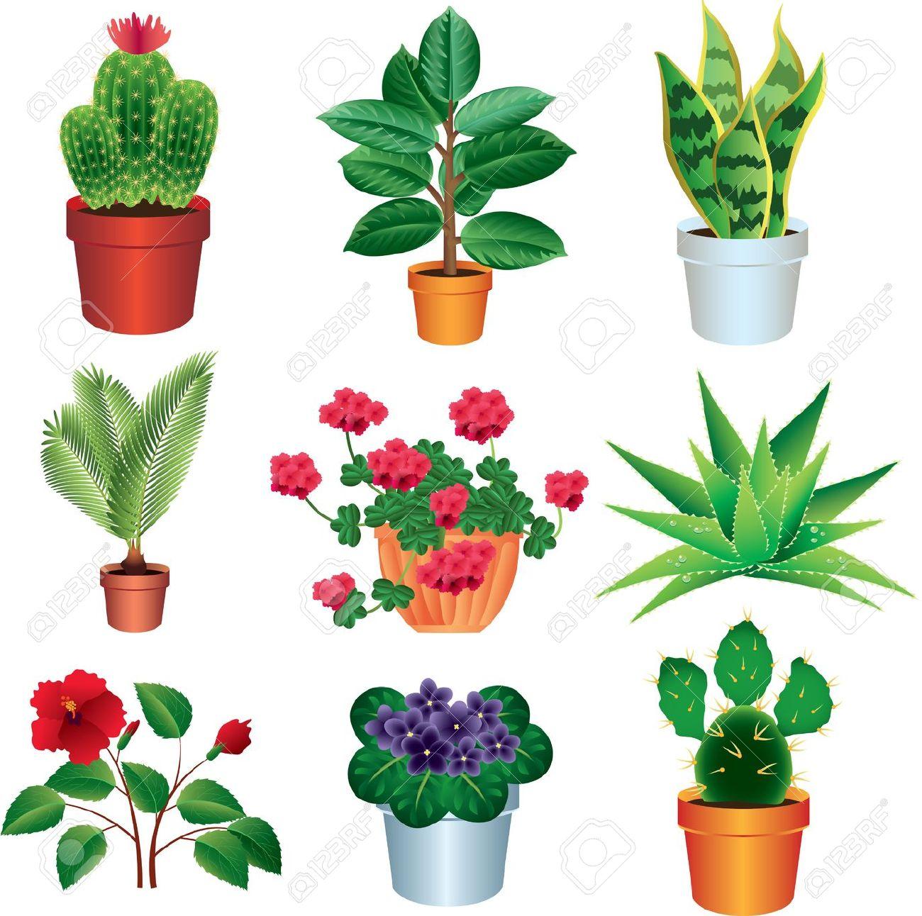 Garden shrub clipart #18