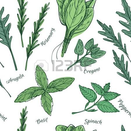 20,082 Herb Garden Stock Illustrations, Cliparts And Royalty Free.
