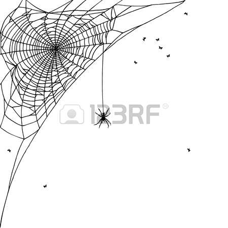 491 Garden Spider Stock Illustrations, Cliparts And Royalty Free.