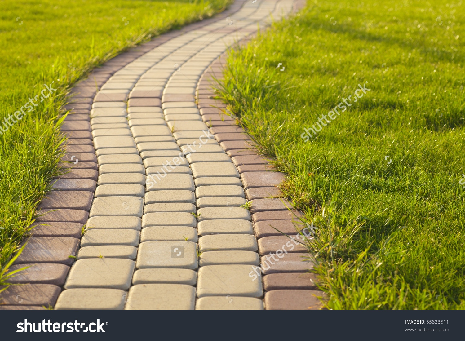 Garden Stone Path Grass Growing Between Stock Photo 55833511.