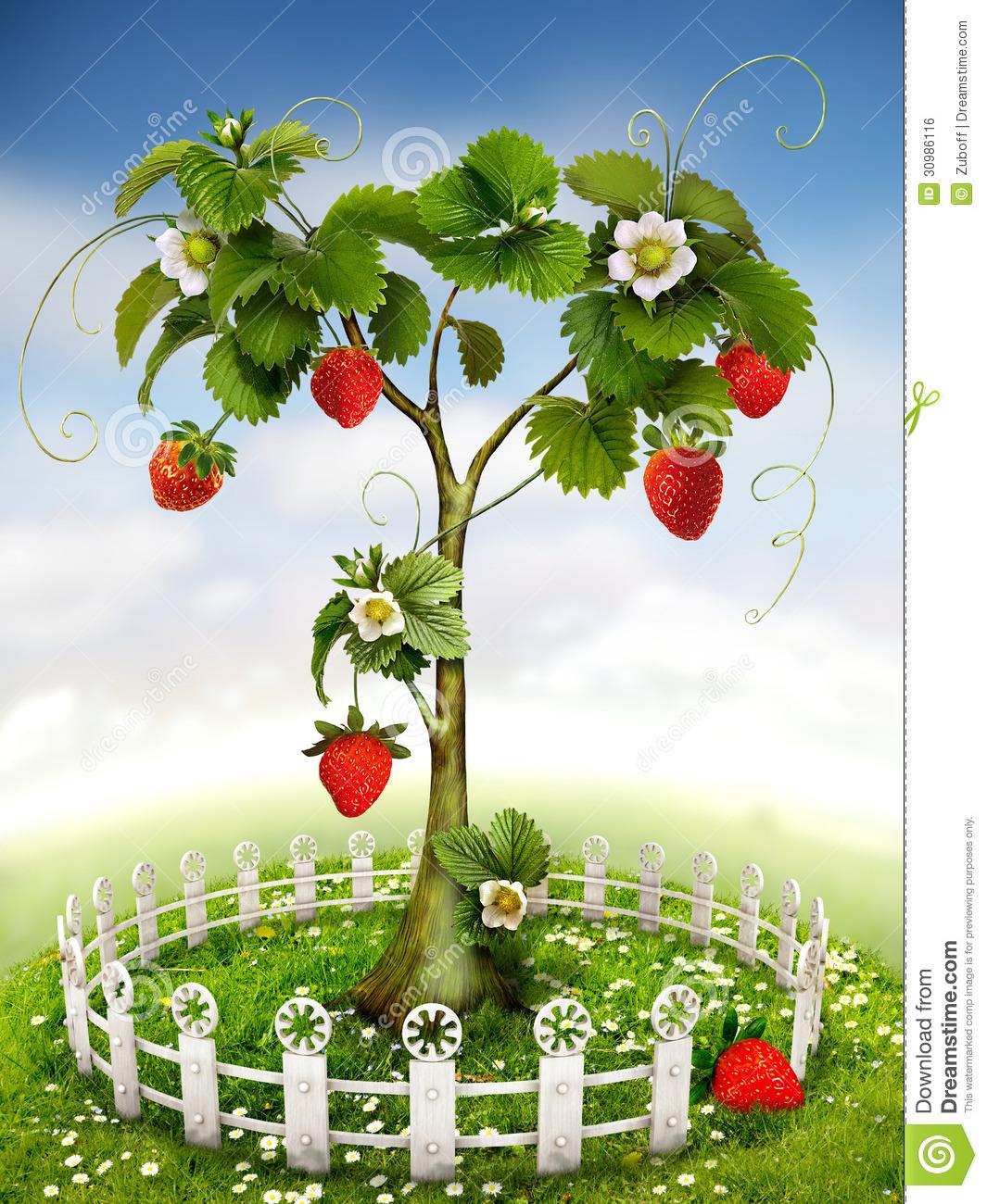 Strawberry garden clipart.