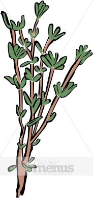 Thyme Clipart.