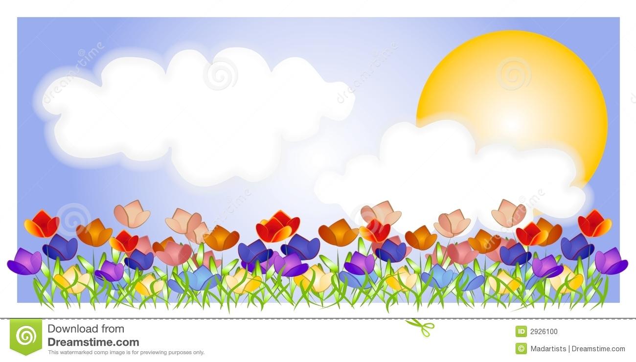 Tulip Stock Illustrations.