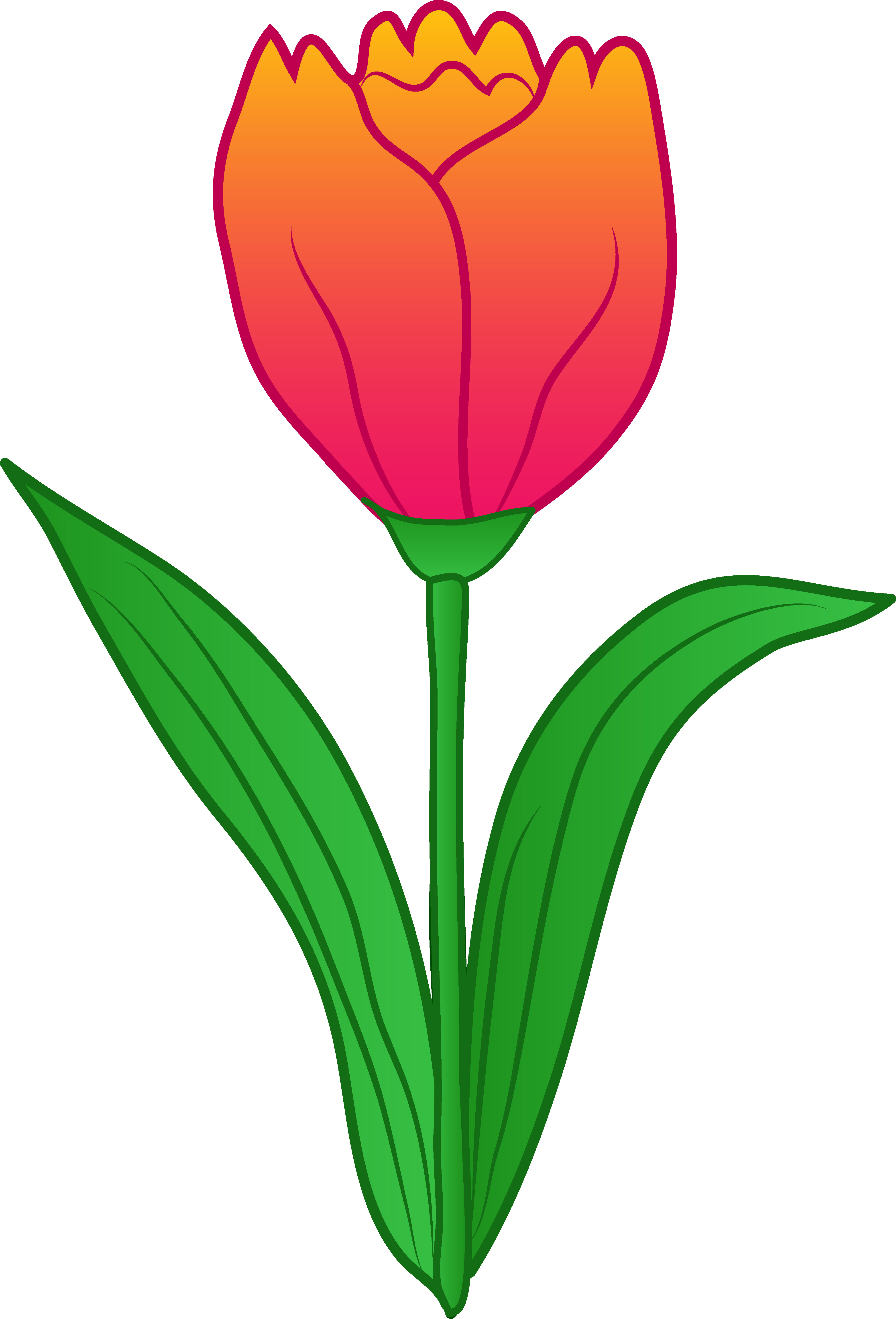 Clipart tulip cute.