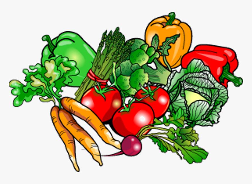 Clipart Vegetable Garden.