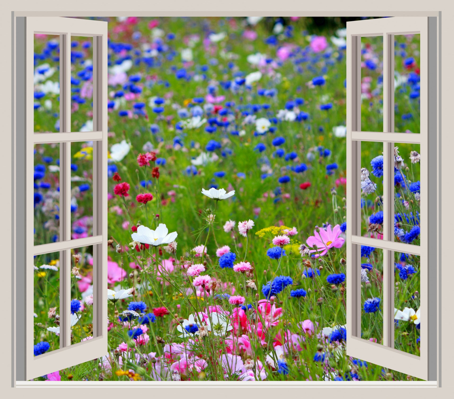 Window view clipart.