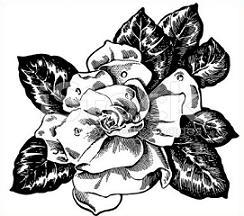 Free Gardenia Clipart.