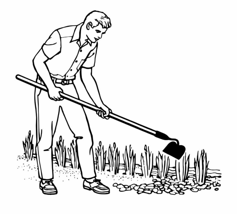 Gardening Gardener Drawing Horticulture.