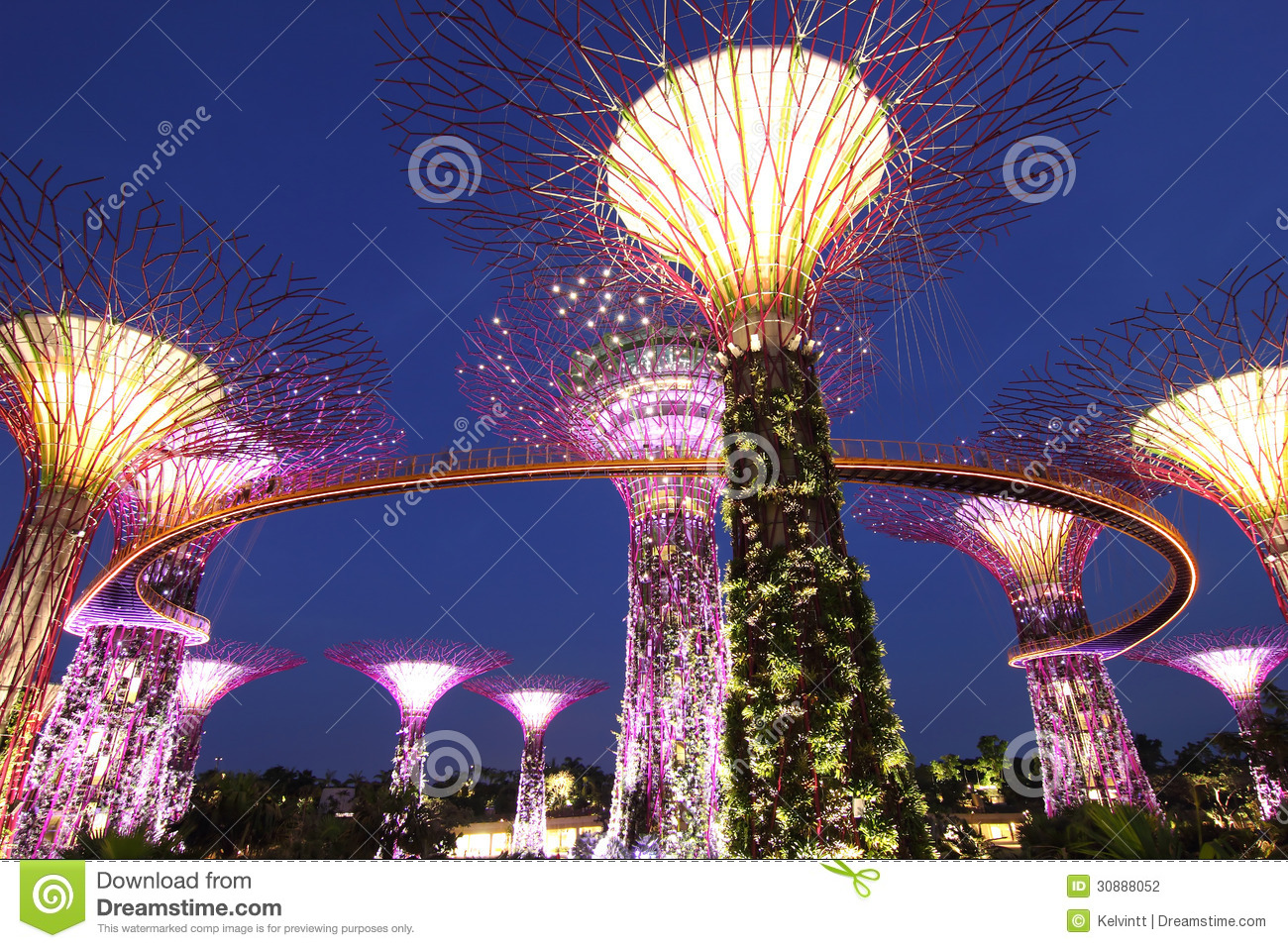 Evening View Of The Supertree Grove Stock Photography.