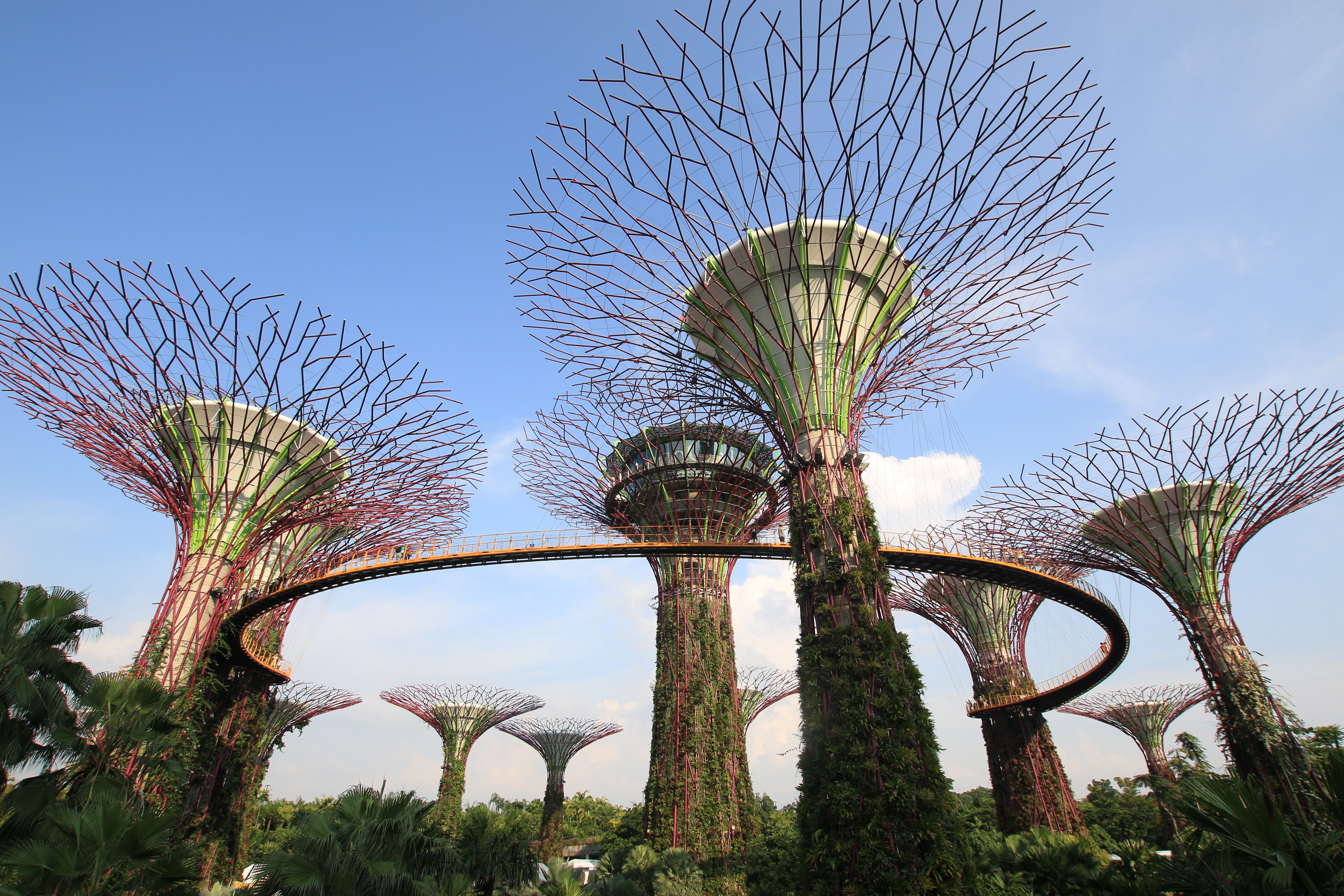Gardens by the bay clipart.