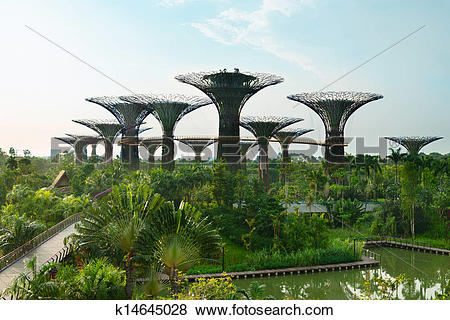 Pictures of Gardens by the Bay Singapore with supertrees k14645028.